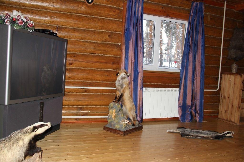 """База отдыха """"Разгуляй"""" Тамбовская область Апартаменты, фото 5"""