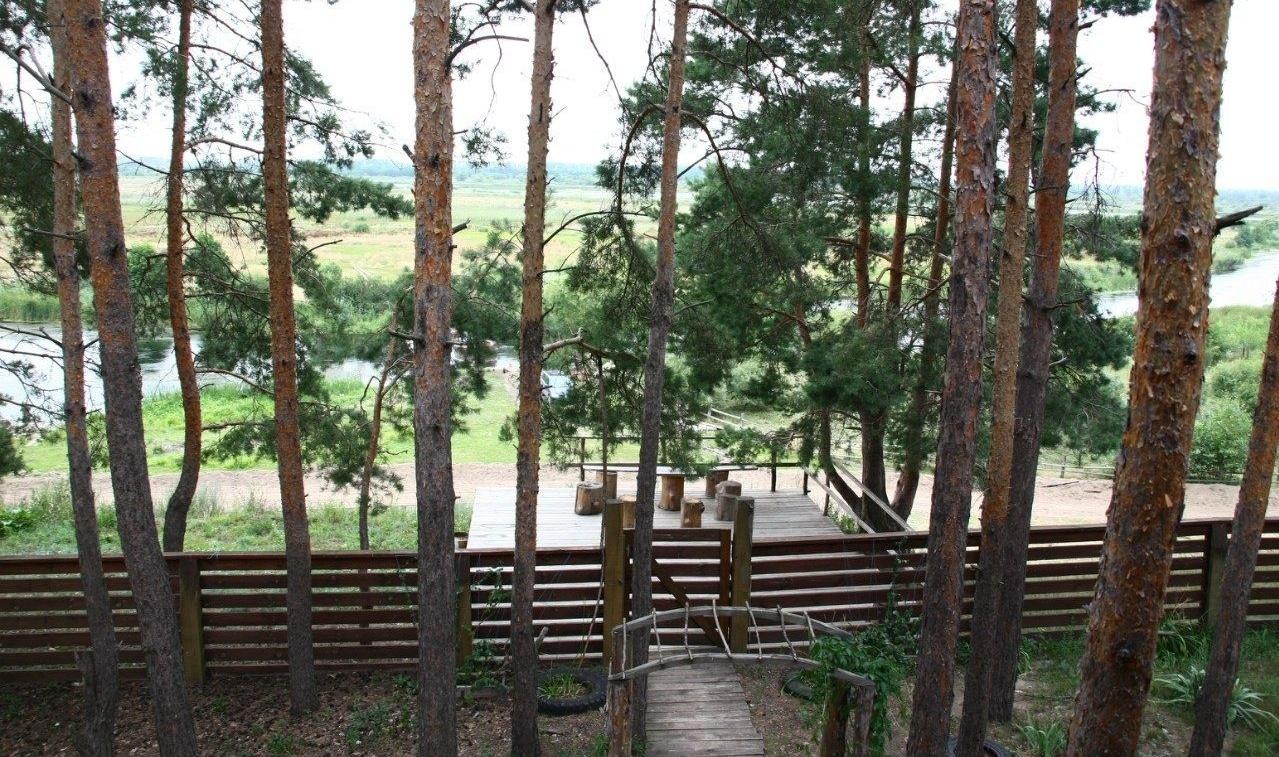 """База отдыха """"Разгуляй"""" Тамбовская область, фото 4"""