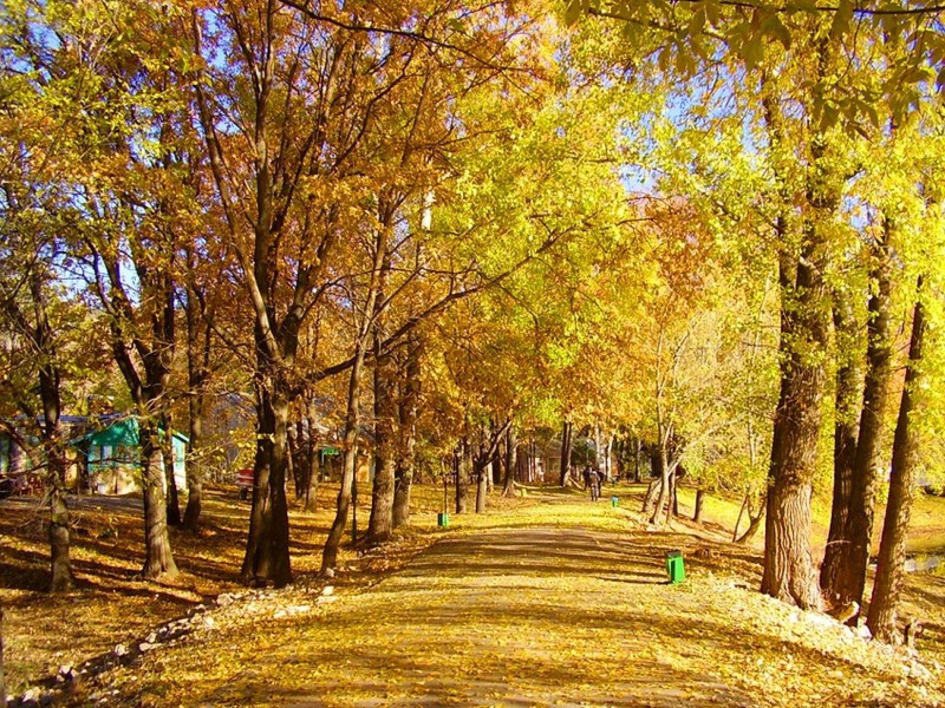 Загородный комплекс «Алые паруса» Самарская область, фото 29