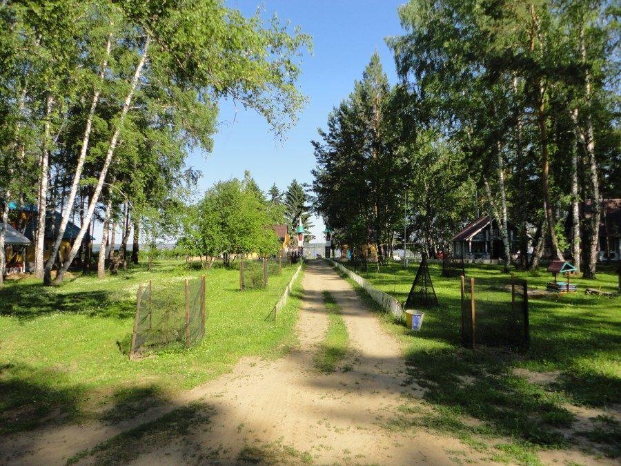 База отдыха «Обские просторы» Новосибирская область, фото 12