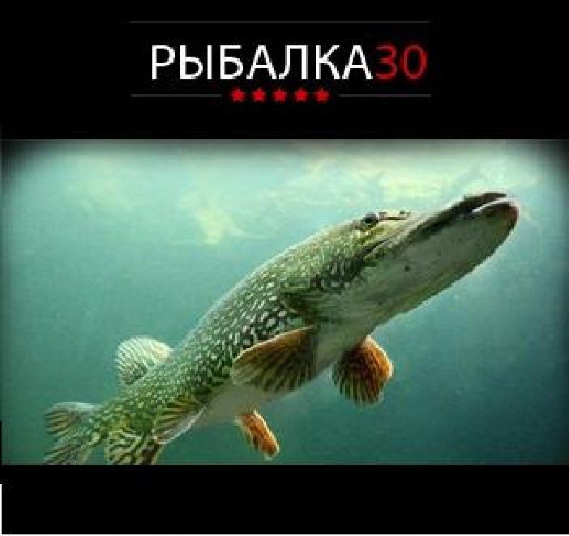 """Рыболовно-охотничья база """"Fishing30"""" Астраханская область, фото 6"""