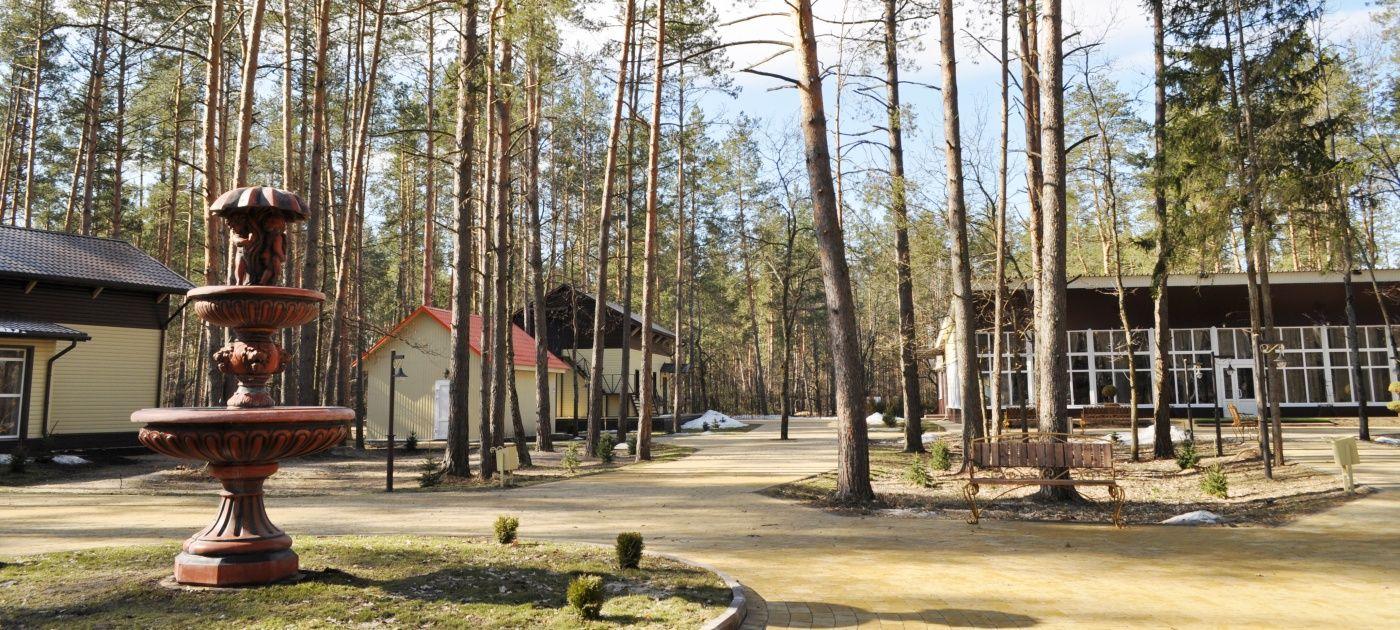 """База отдыха """"Зеленый Бор"""" Брянская область, фото 9"""
