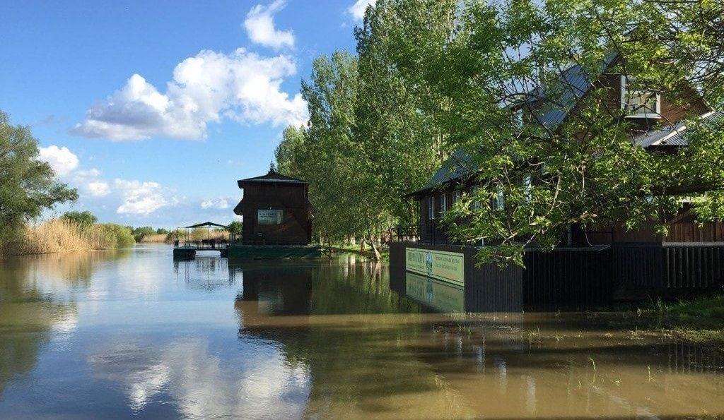 База отдыха «Нерестина» Астраханская область, фото 19