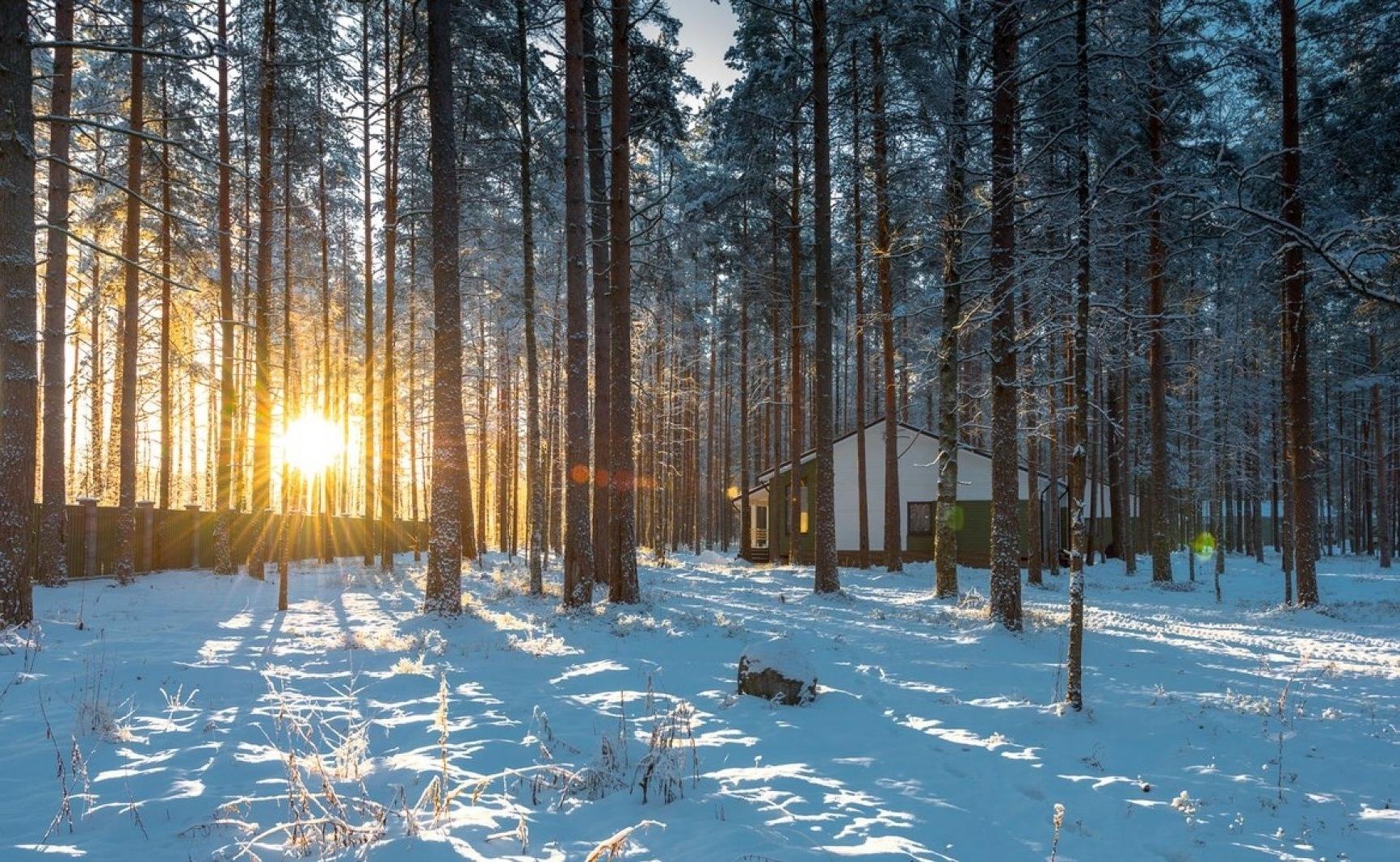 """База отдыха """"Eco Village"""" Ленинградская область, фото 22"""