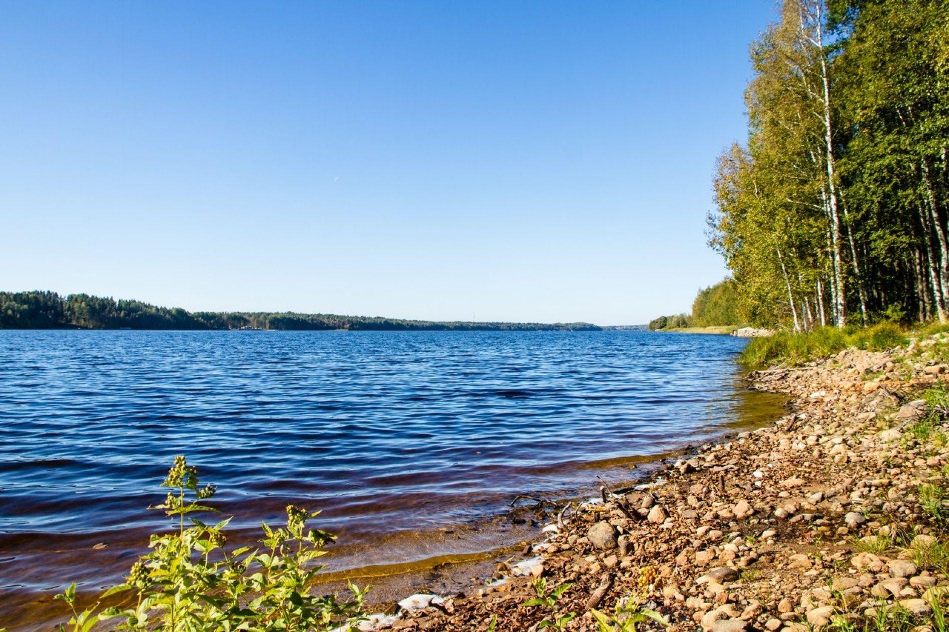 """База отдыха """"Eco Village"""" Ленинградская область, фото 19"""