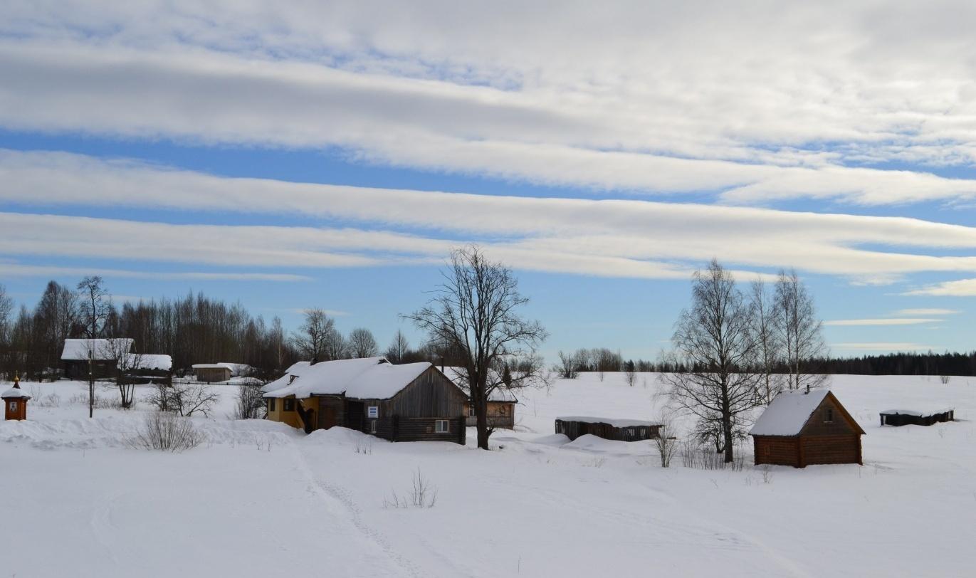 Центр ездового спорта «Северная Надежда» Костромская область, фото 13