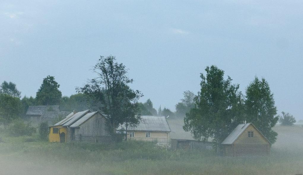 Центр ездового спорта «Северная Надежда» Костромская область, фото 3