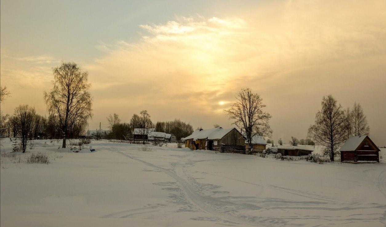 Центр ездового спорта «Северная Надежда» Костромская область, фото 16