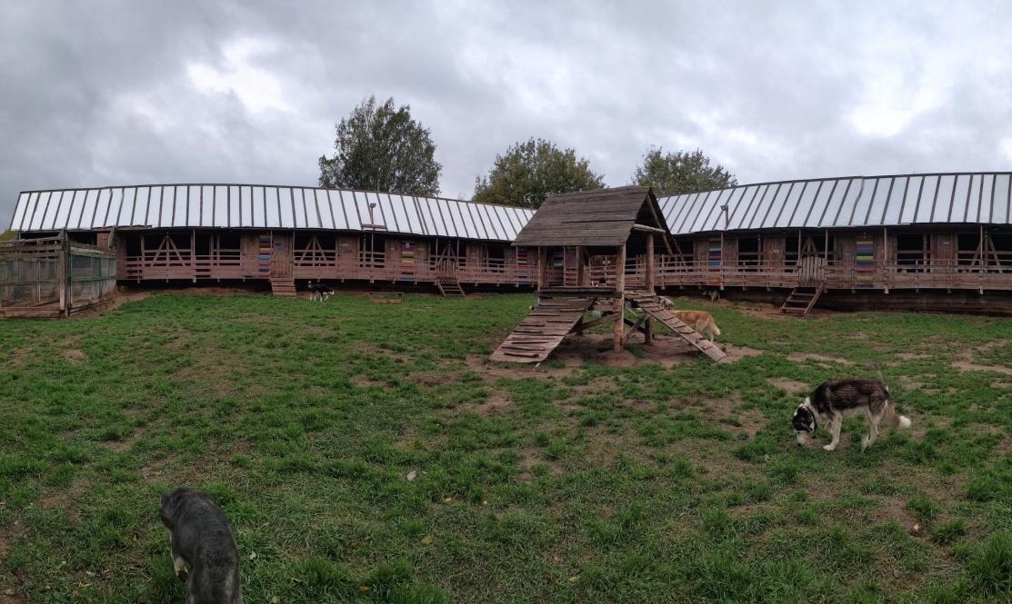 Центр ездового спорта «Северная Надежда» Костромская область, фото 6
