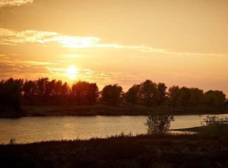 """База отдыха """"Золотая Рыбка"""" Астраханская область, фото 14"""