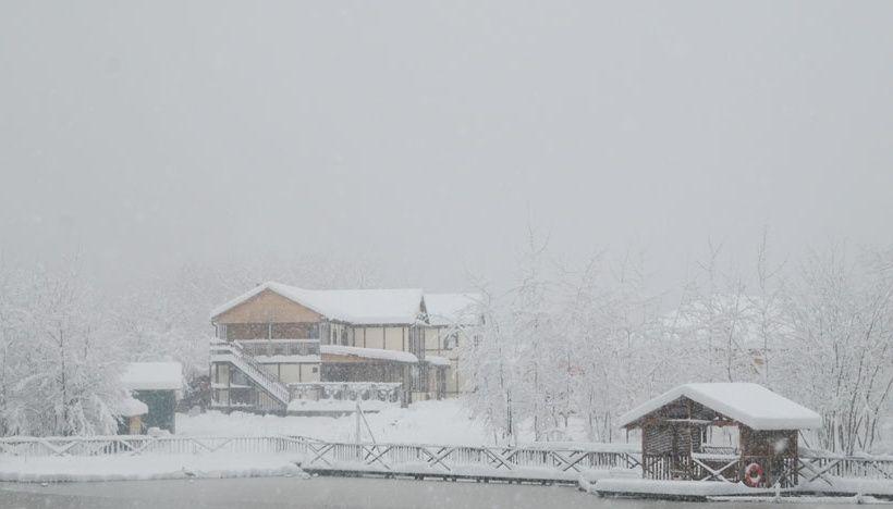 Резиденция Комфорта «Family Fishing» Краснодарский край, фото 22
