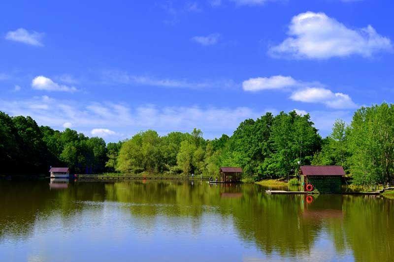 Резиденция Комфорта «Family Fishing» Краснодарский край, фото 16