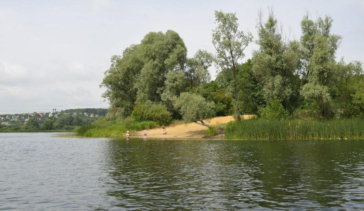 База отдыха «Белые пески» Воронежская область, фото 12