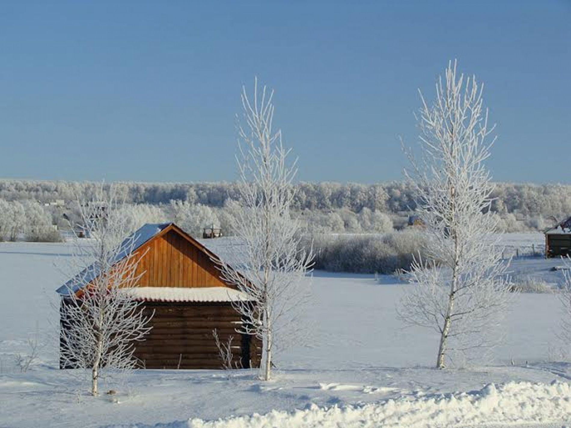 Оздоровительный комплекс «Валяевские озера» Пензенская область, фото 12