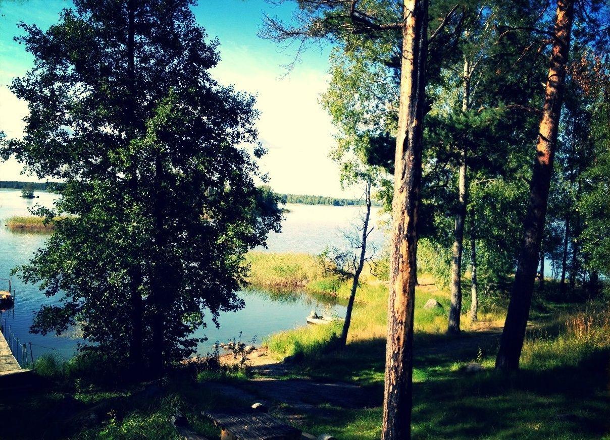 База отдыха «Робинзон» Ленинградская область, фото 7