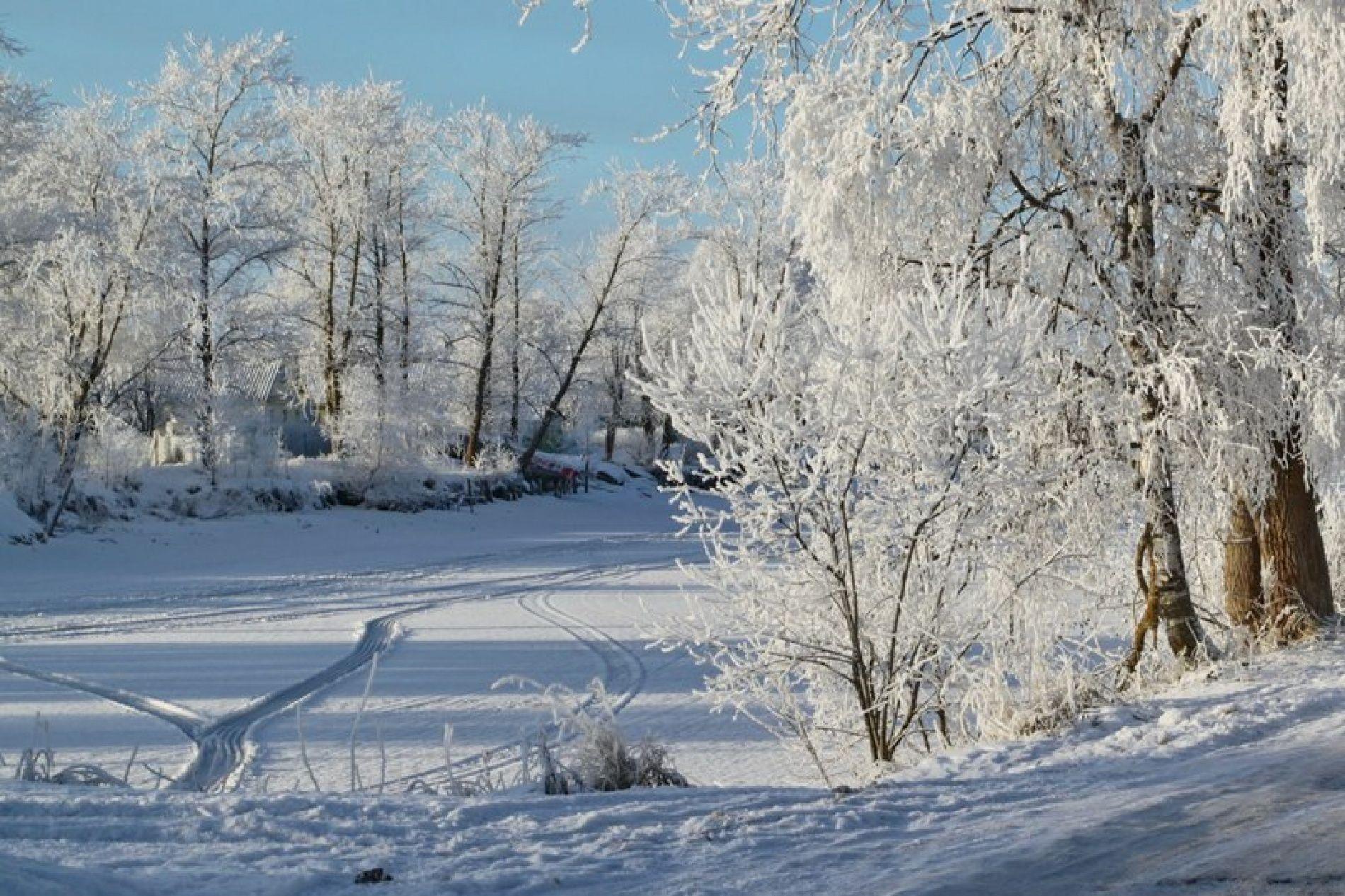 База отдыха «Медвежья кара» Ленинградская область, фото 20