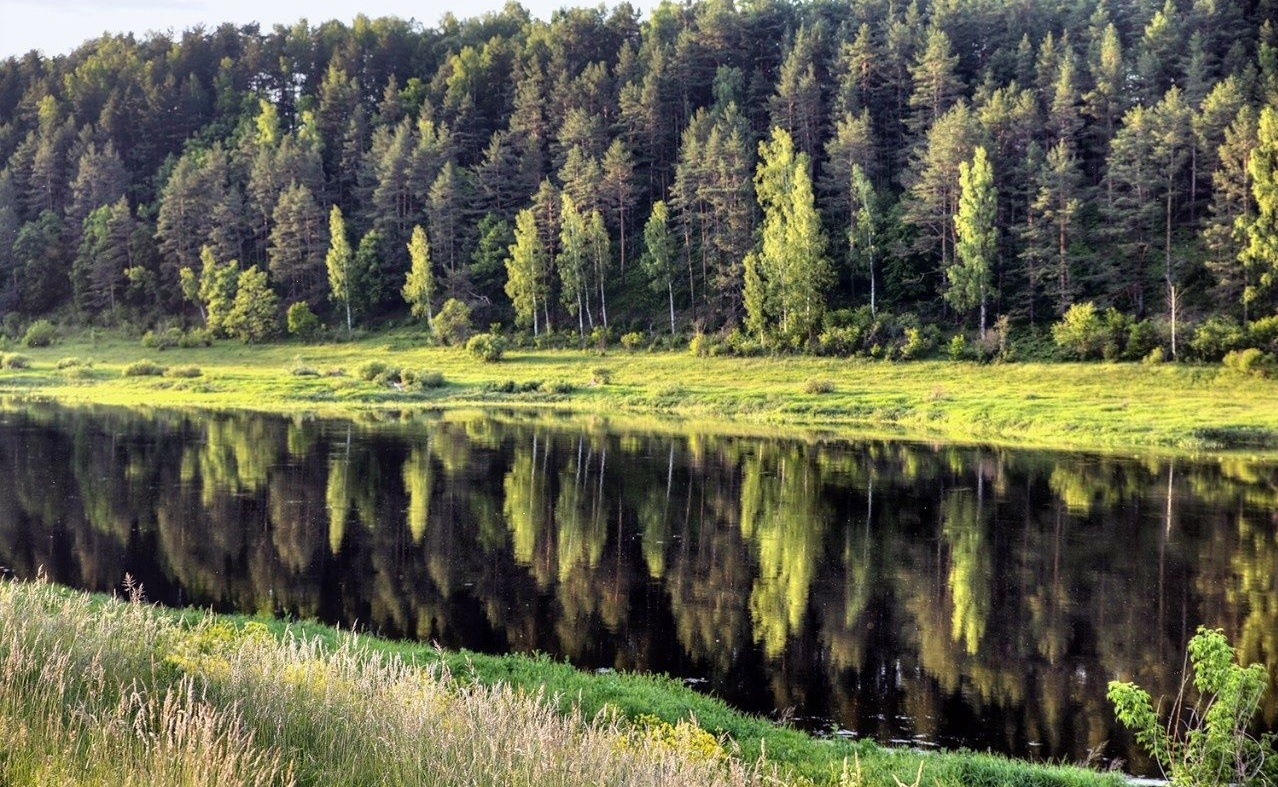 Эко-лэнд «Чукавино» Тверская область, фото 8