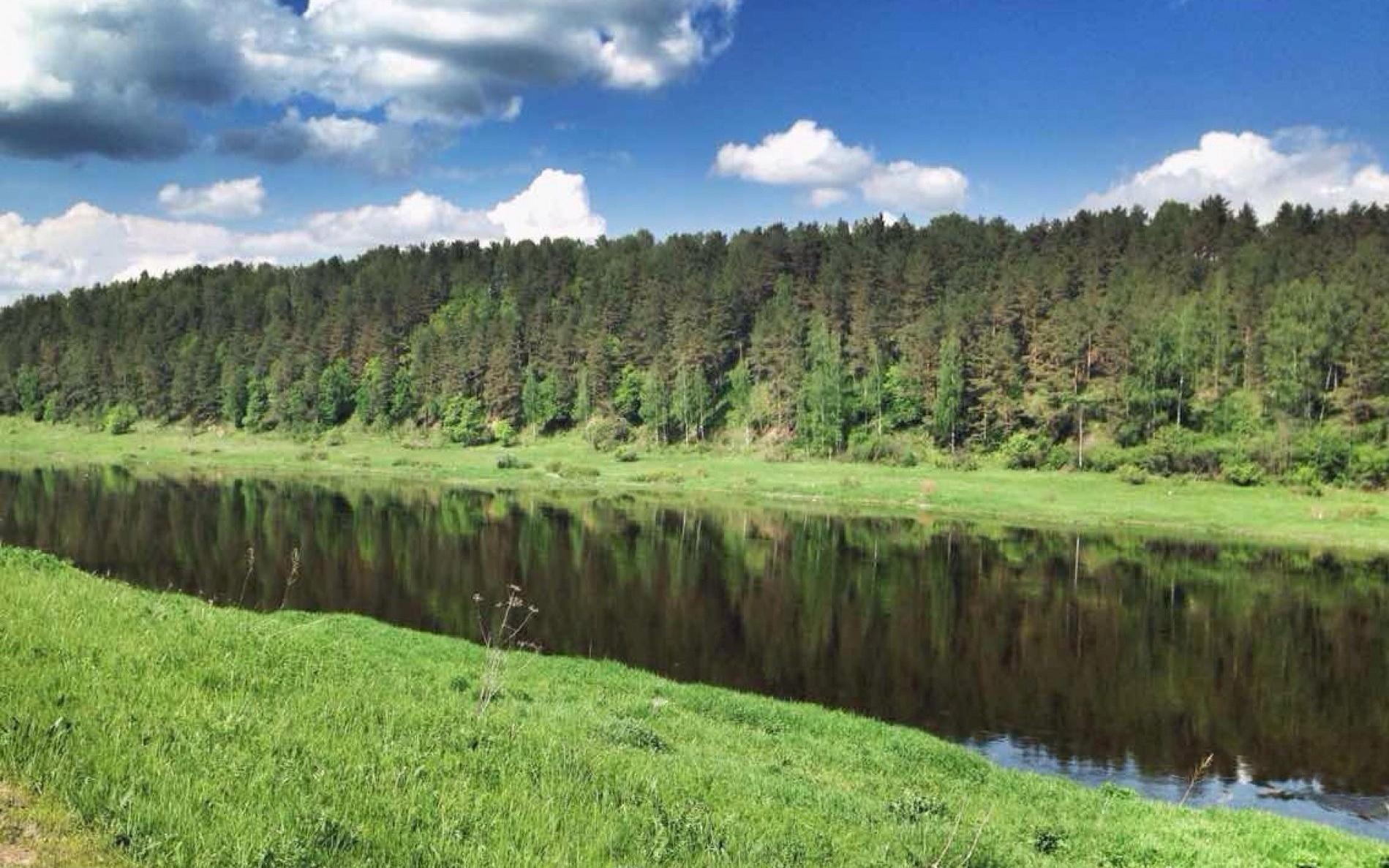 """Эко-лэнд """"Чукавино"""" Тверская область, фото 7"""