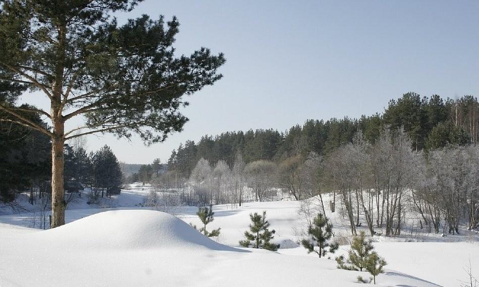 База отдыха «Княжья речка» Тверская область, фото 15