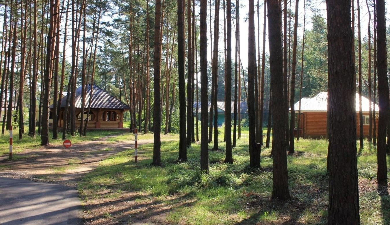 База отдыха «Княжья речка» Тверская область, фото 11