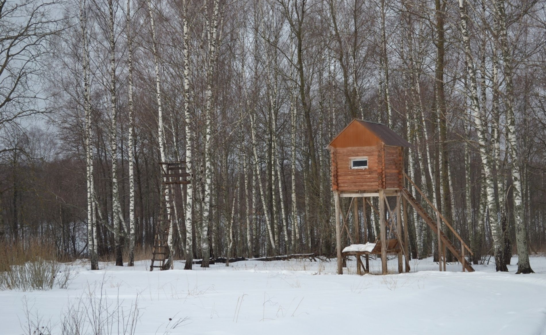 Рыболовно-охотничья база «Истринский» Калужская область, фото 11