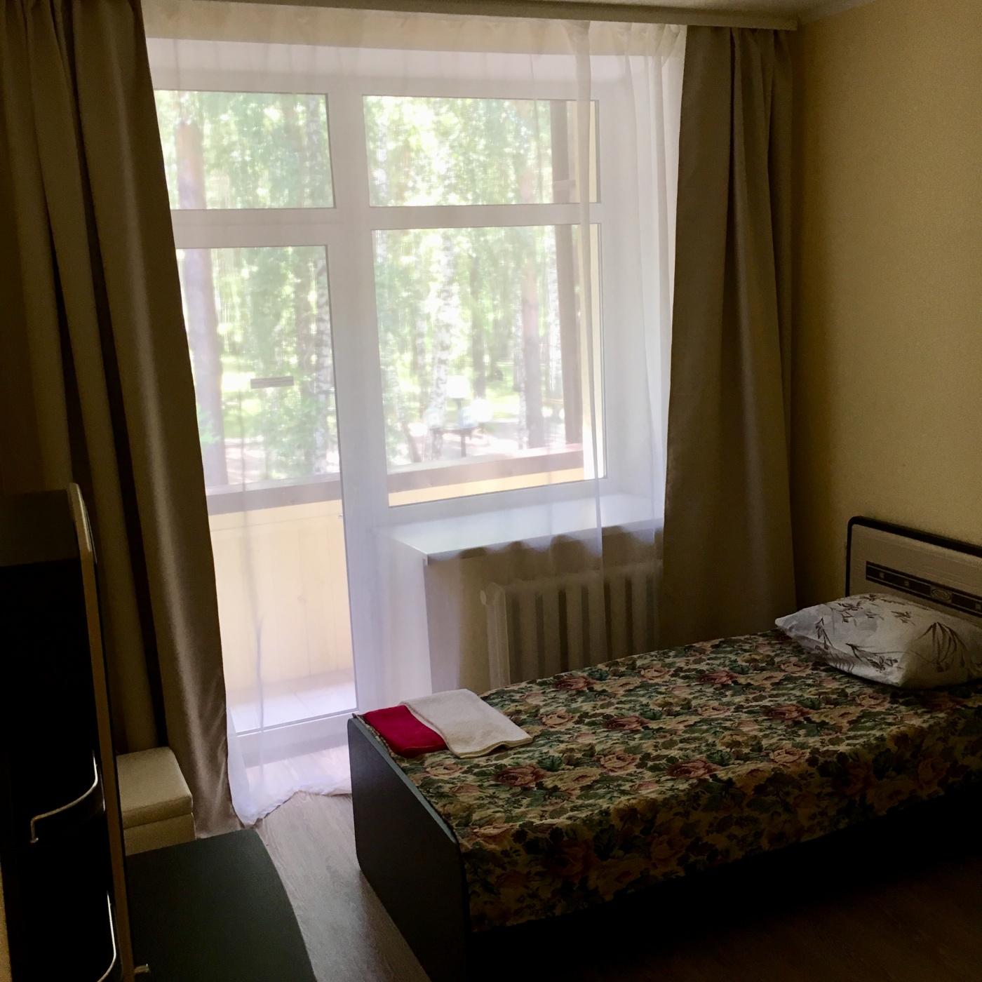 Парк-отель «Энергетик» Томская область Номер «Комфорт» , фото 1