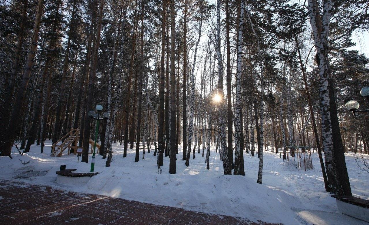 Парк-отель «Энергетик» Томская область, фото 13