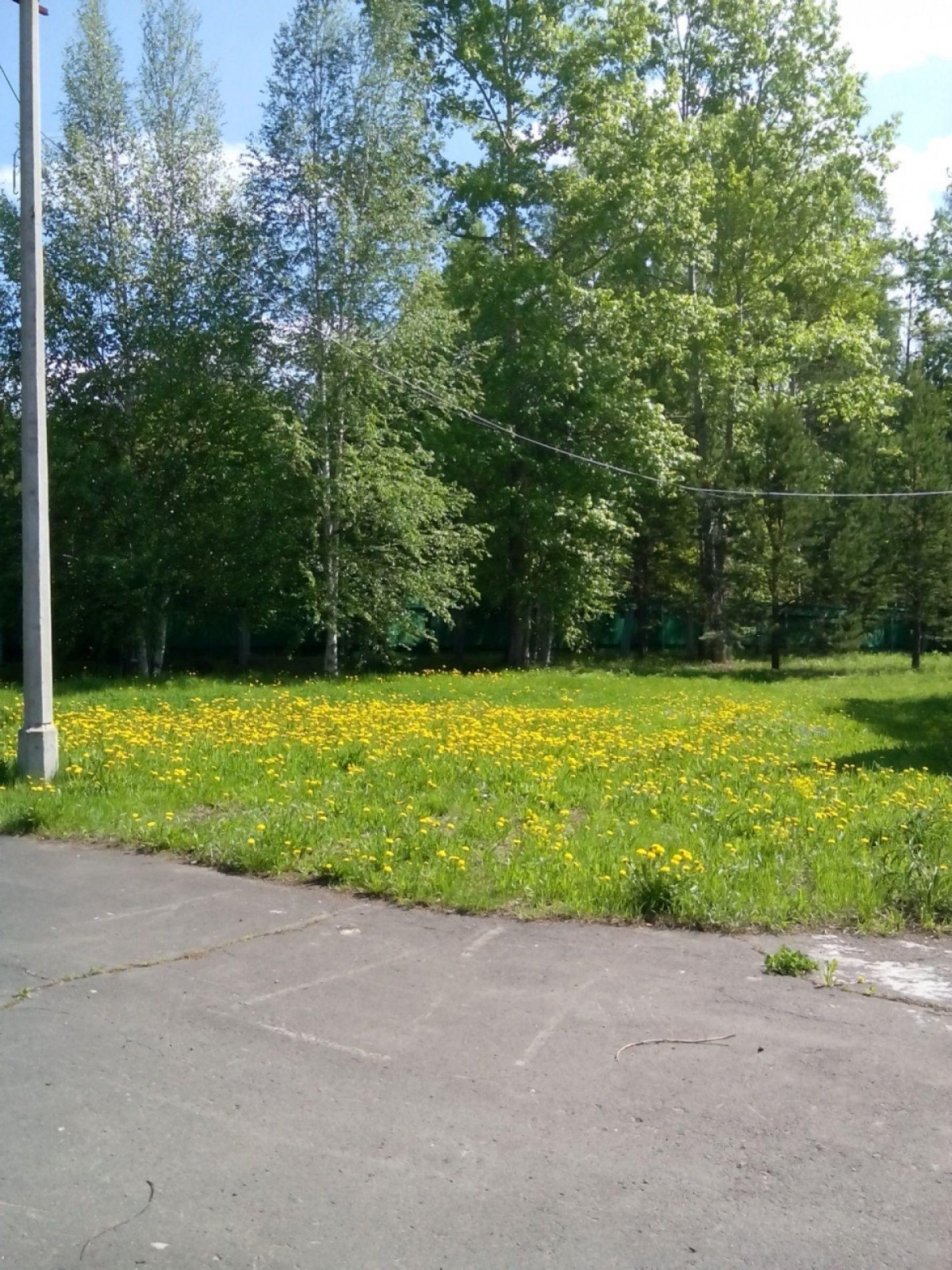 """База отдыха """"Лосенок"""" Иркутская область, фото 5"""