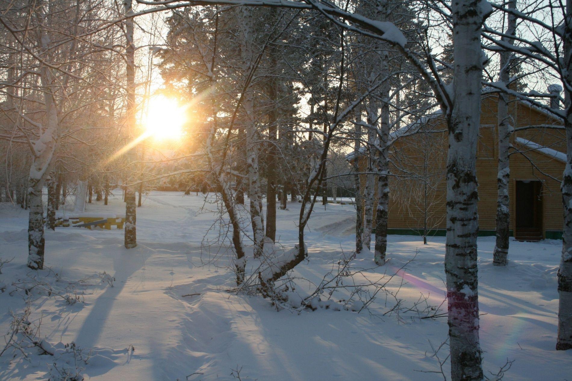 """База отдыха """"Лосенок"""" Иркутская область, фото 14"""