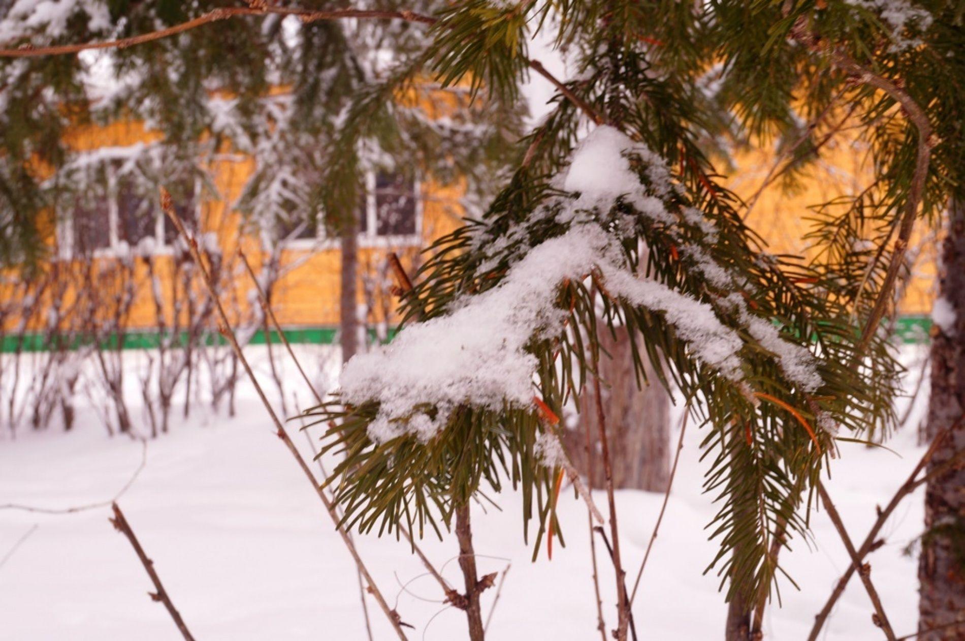 """База отдыха """"Лосенок"""" Иркутская область, фото 39"""