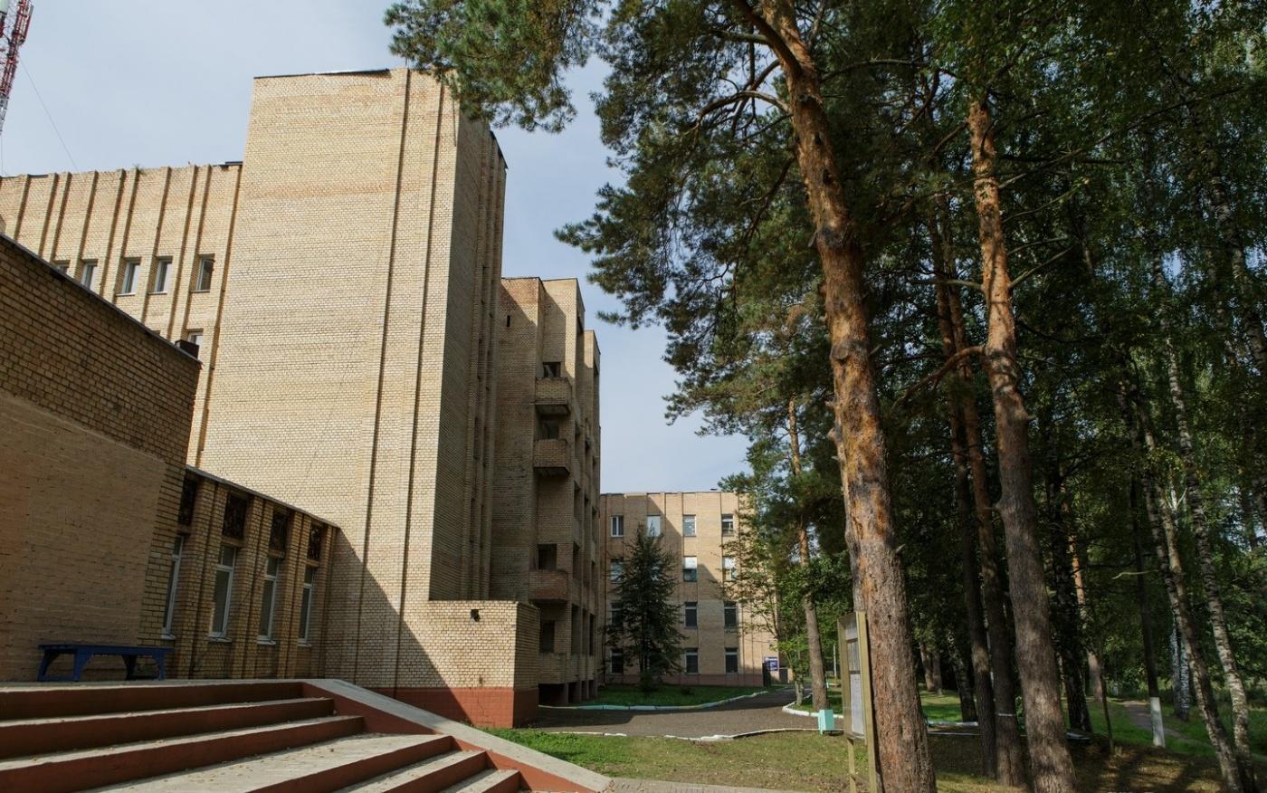 База отдыха «Боровое» Московская область, фото 4