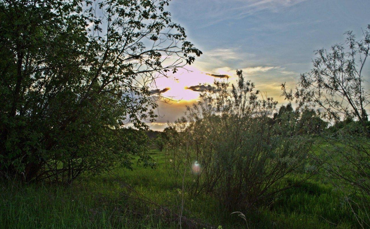 База отдыха «Рудня Хутор» Калужская область, фото 10