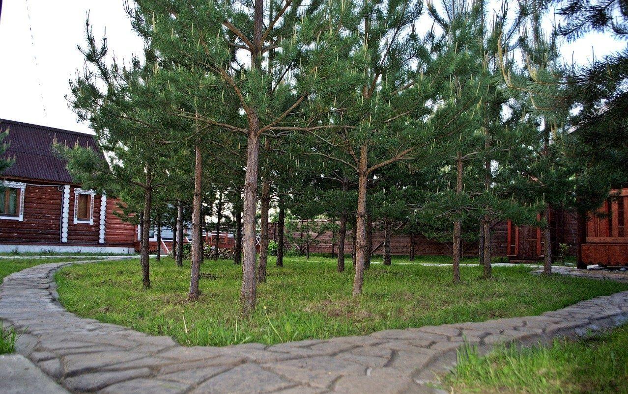 База отдыха «Рудня Хутор» Калужская область, фото 9