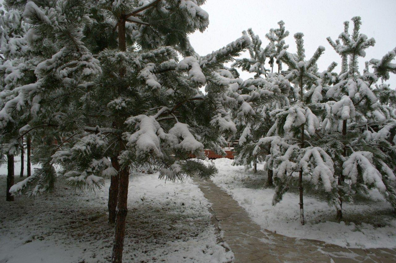База отдыха «Рудня Хутор» Калужская область, фото 18