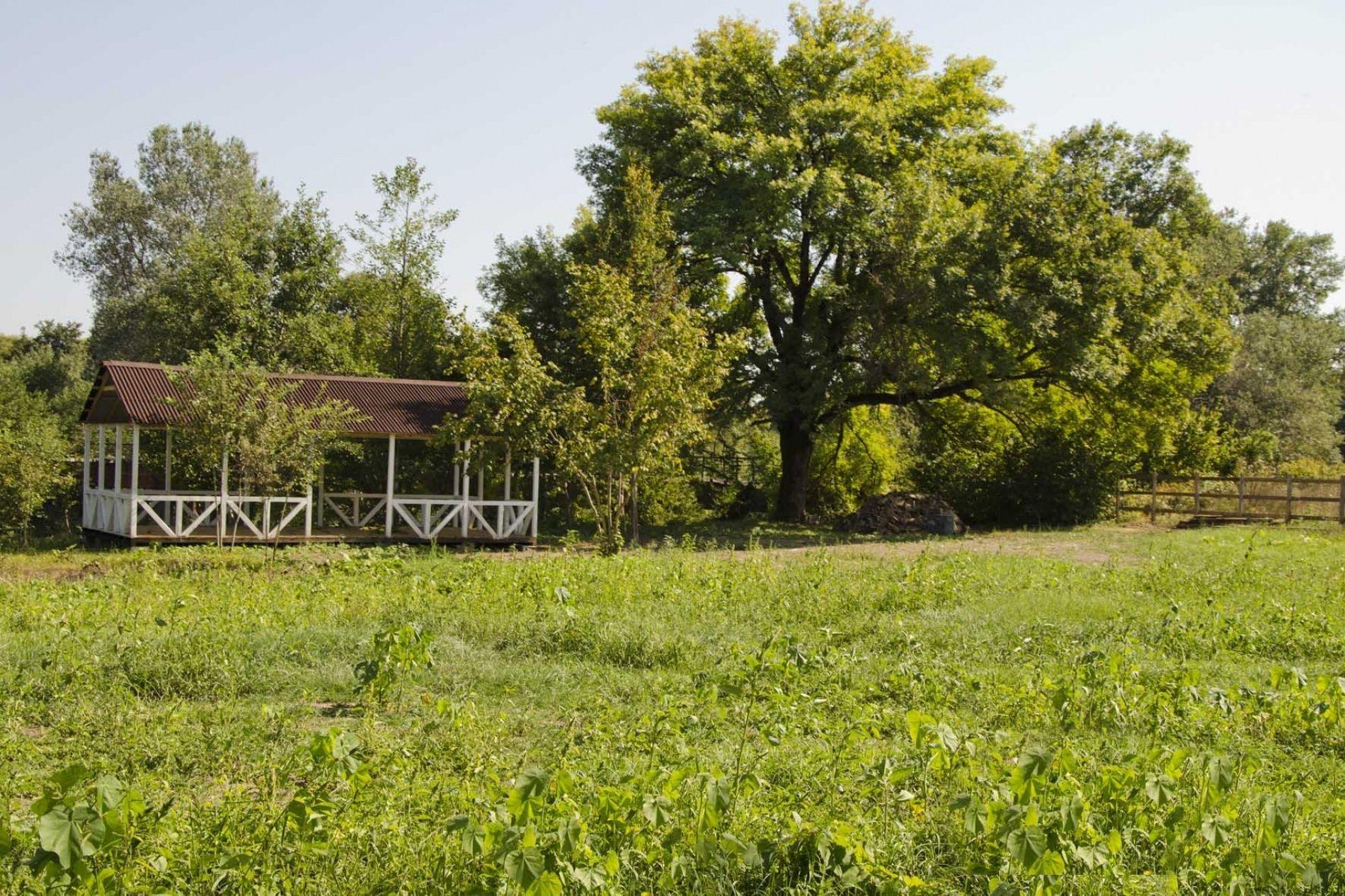 База отдыха Старый ясень Краснодарский край, фото 6