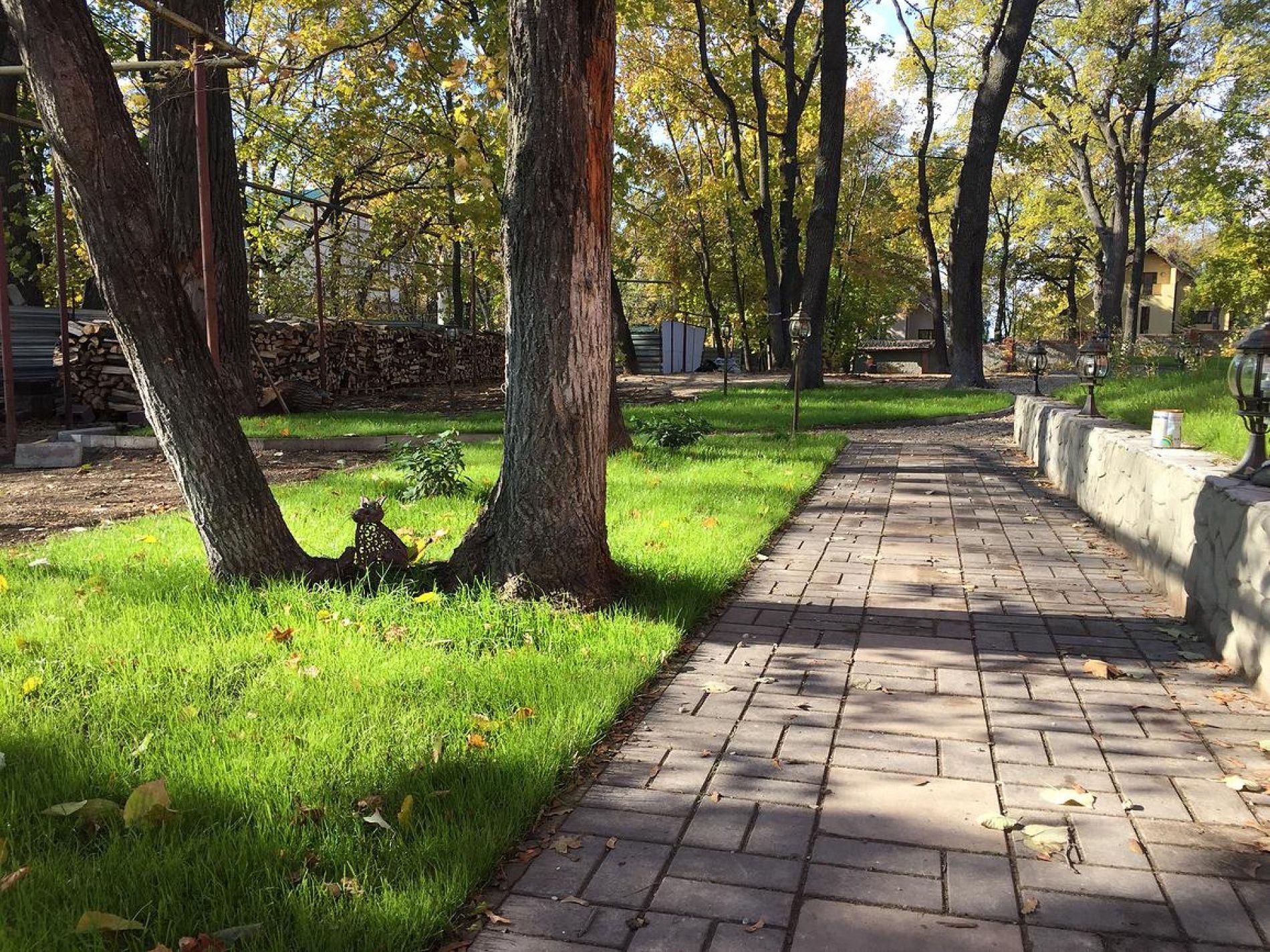 """Парк-отель """"Три Кота"""" Самарская область, фото 4"""