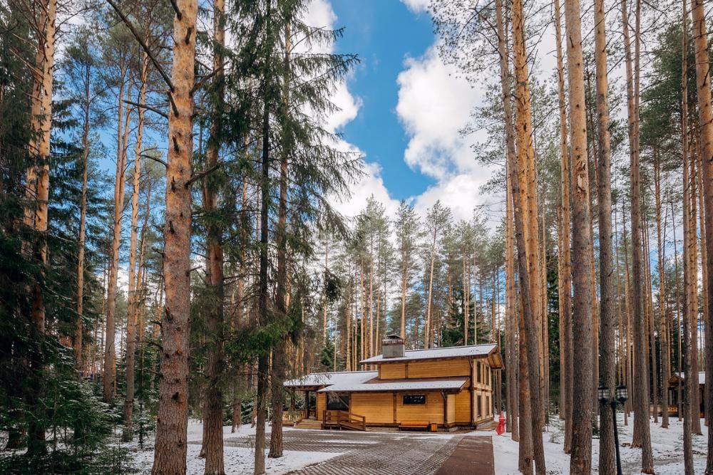 Курорт «Охта Парк» Ленинградская область, фото 18