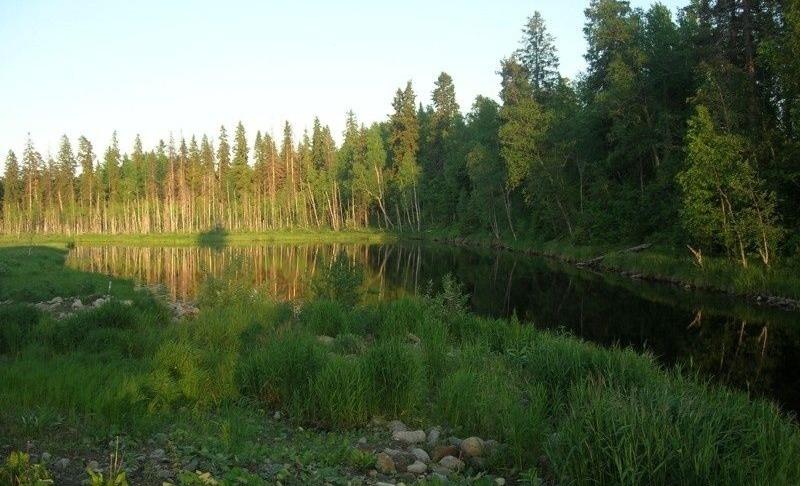 База отдыха «Плотина» Республика Карелия, фото 7