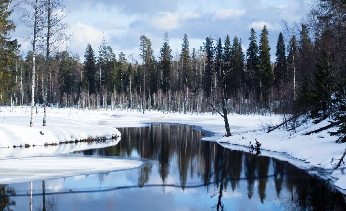 База отдыха «Плотина» Республика Карелия, фото 20