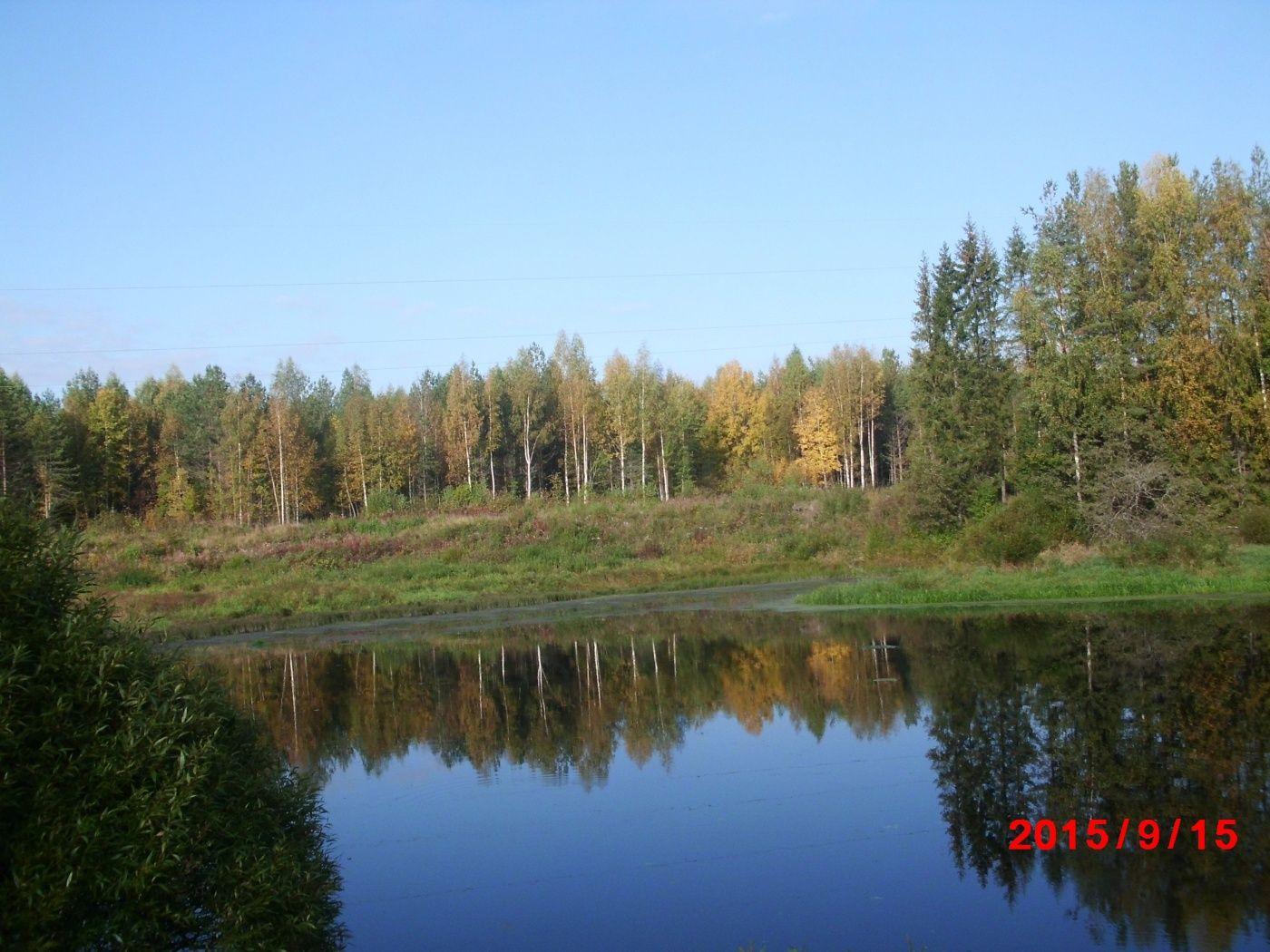 """База отдыха """"Резиденция Комела"""" Вологодская область, фото 48"""