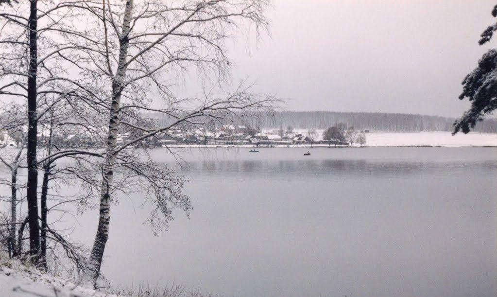 Спортивно-туристическая база «Динамо» Рязанская область, фото 6