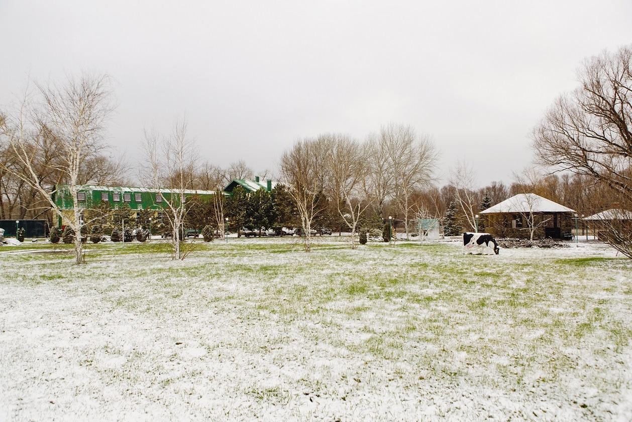Турбаза «Бристоль» Волгоградская область, фото 13