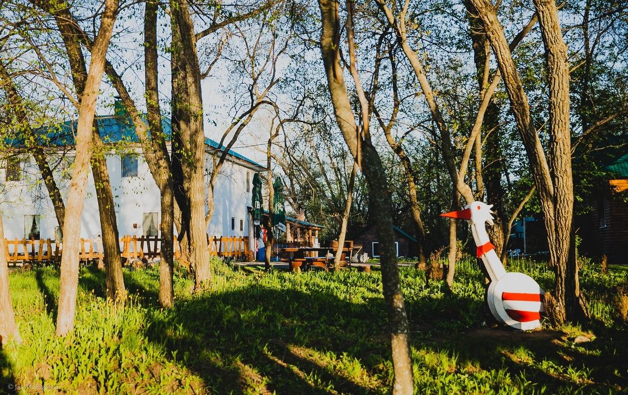 Турбаза «Березка» Саратовская область, фото 2