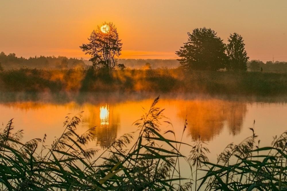 База отдыха «Чистые Пруды» Псковская область, фото 10