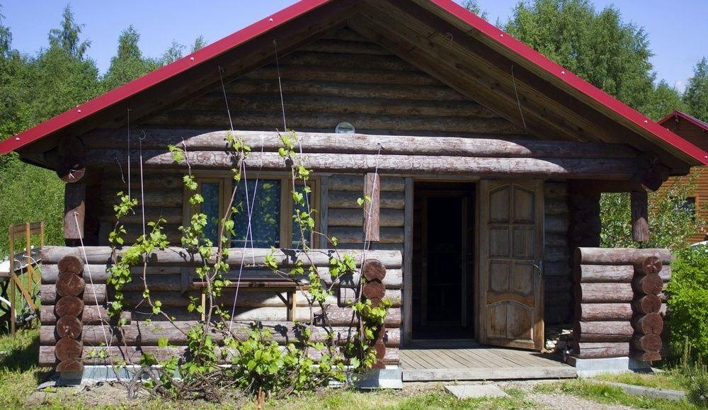 База отдыха «Чистые Пруды» Псковская область, фото 4