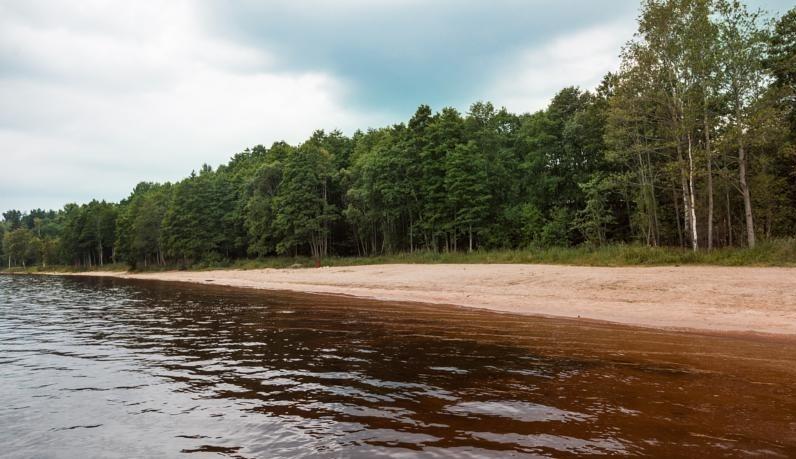 Комплекс отдыха «Драгунский ручей» Ленинградская область, фото 12