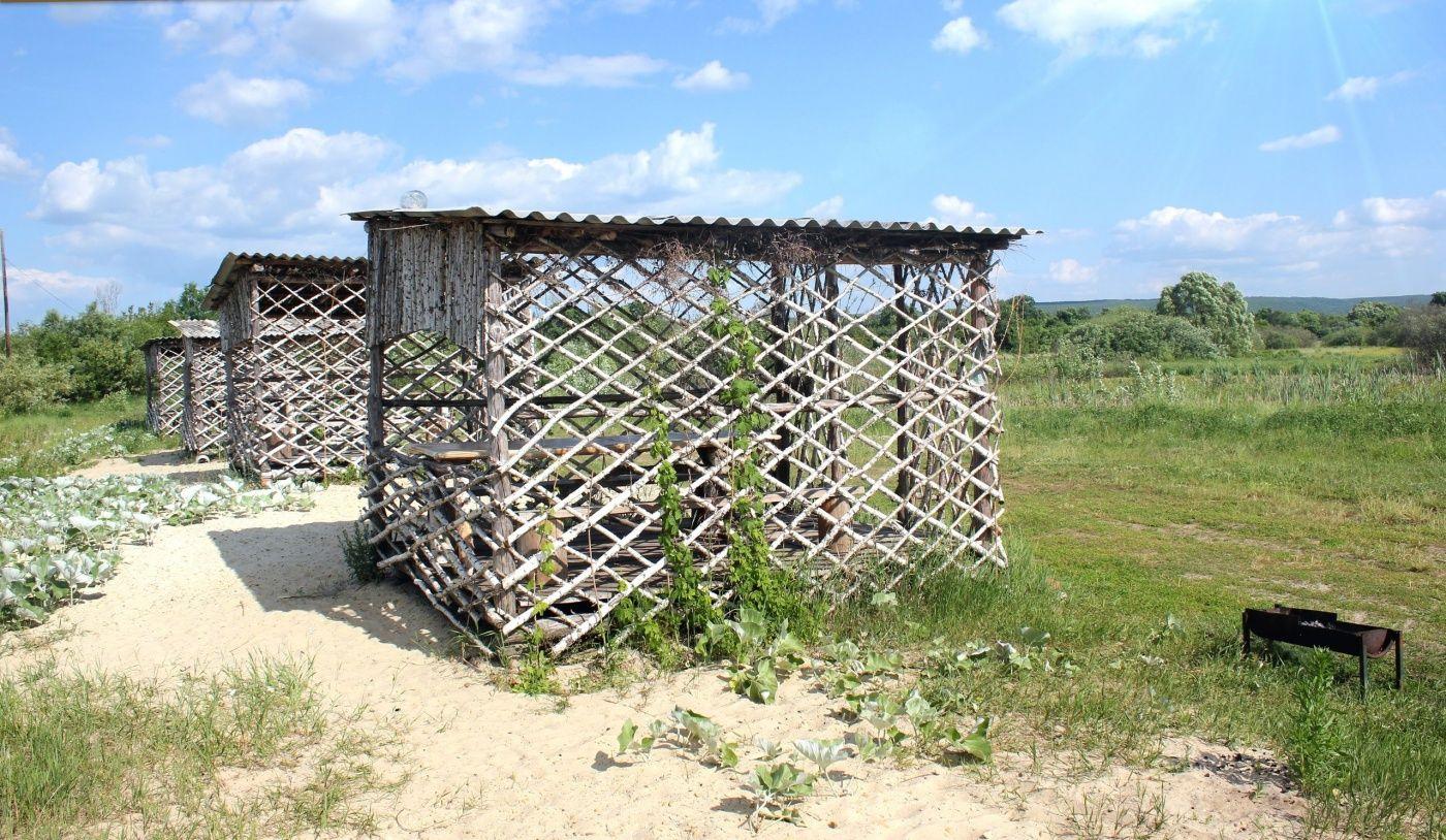 База отдыха «Песчаный берег» Республика Мордовия, фото 7