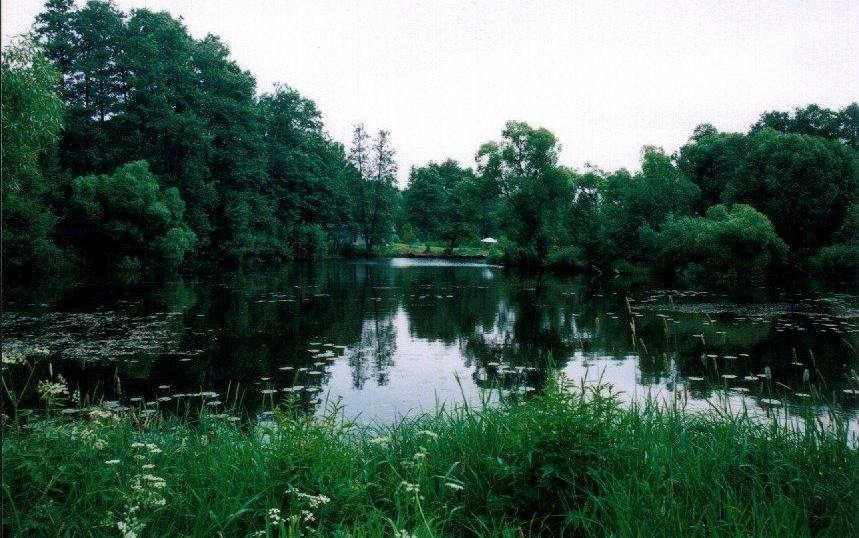 Санаторий «Воробьево» Калужская область, фото 23