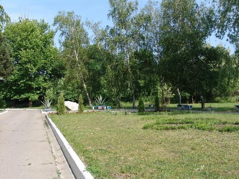 Санаторий «Черноморская зорька» Краснодарский край, фото 6