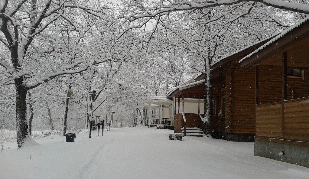 """База отдыха """"Купринка"""" Самарская область, фото 8"""